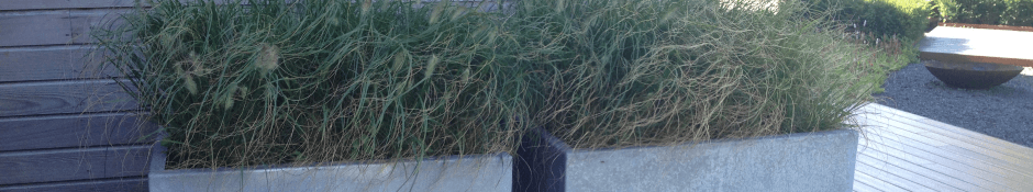 Verzinkt stalen plantenbakken