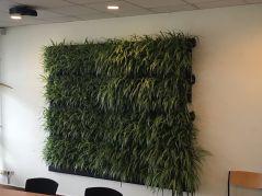 LivePanel Pack - uw groene muur