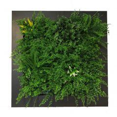 Planten schilderij dichte varen (kunsthaag) 67x67 cm