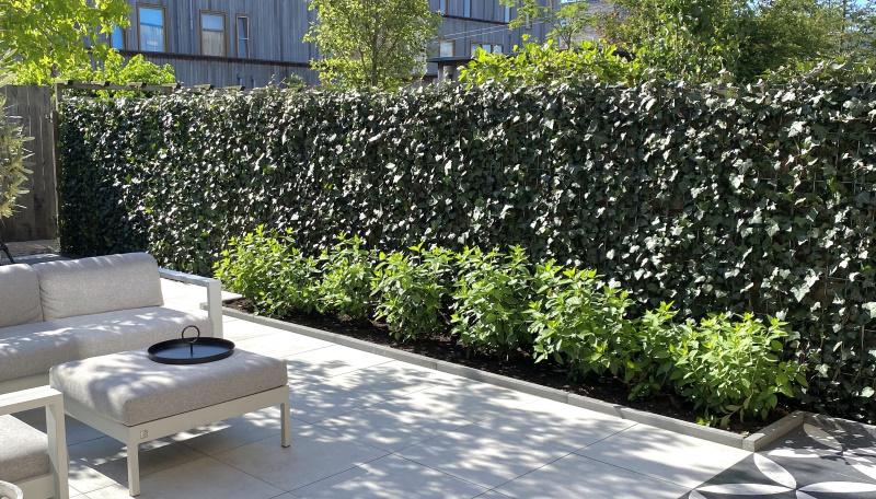Onderhoudsvriendelijke tuin; kant en klaar hagen