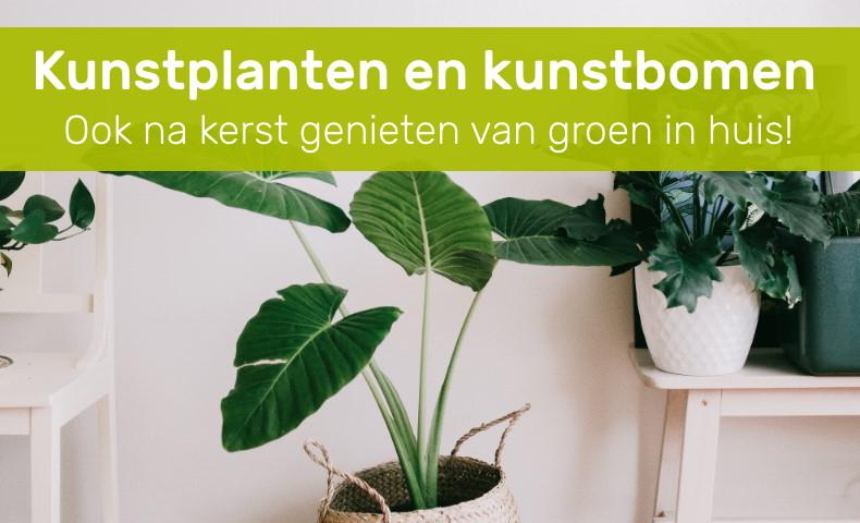 Kunstplanten en kunstbomen
