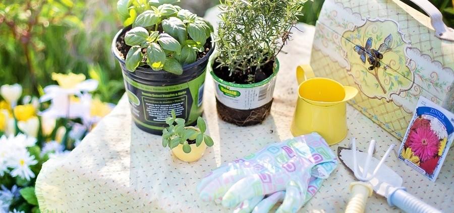 Maak je tuin lente klaar, op de blogs van Greenlab vind je allerlei tips