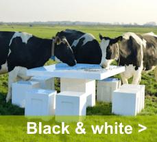 Voor een strakke en moderne uitstraling van je tuin kies je voor hoogglans black and white