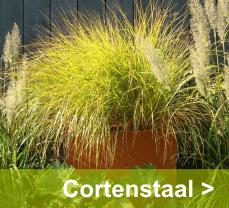 Prachtige roestbruine cortenstalen plantenbakken geven uw tuin een warme uitstraling
