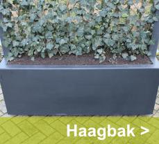 Eenvoudig uw balkon voorzien van een groene afscheiding kan met deze haagbakken